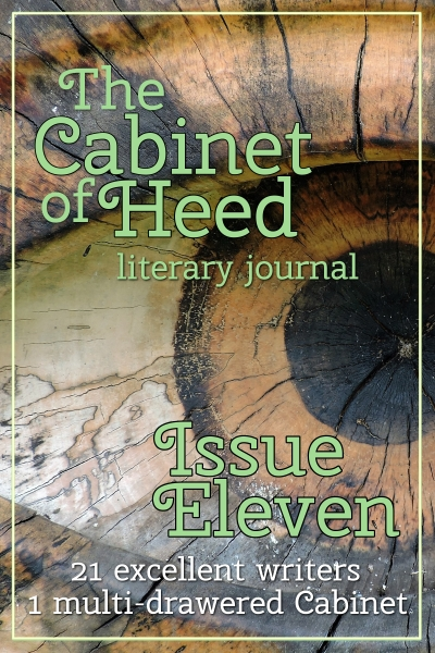 The Cabinet Of Heed Issue 11 Cover