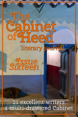 the cabinet of heed issue 16 cover