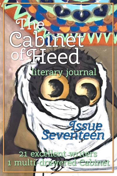 The Cabinet Of Heed Issue 17 Cover
