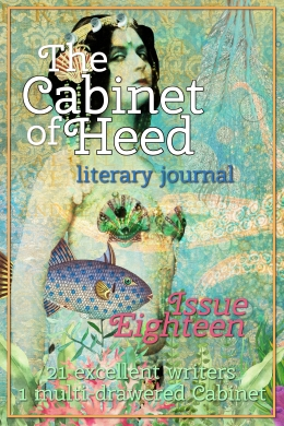 The Cabinet Of Heed Issue 18 Cover