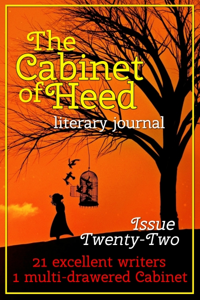 The Cabinet Of Heed Issue 22 Cover