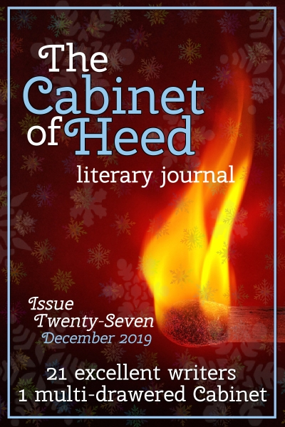 The Cabinet Of Heed Issue 27 Cover