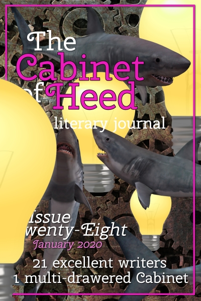 The Cabinet Of Heed Issue 28 Cover