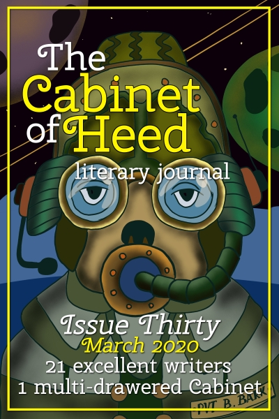 The Cabinet Of Heed Issue 30 Cover