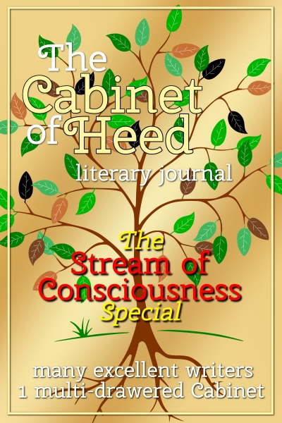 The Cabinet Of Heed Stream of Consciousness Issue Cover