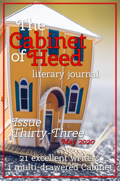 The Cabinet Of Heed Issue 33 Cover