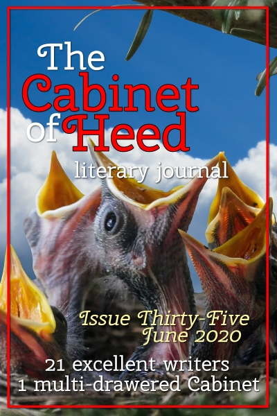 The Cabinet Of Heed Issue 35 Cover