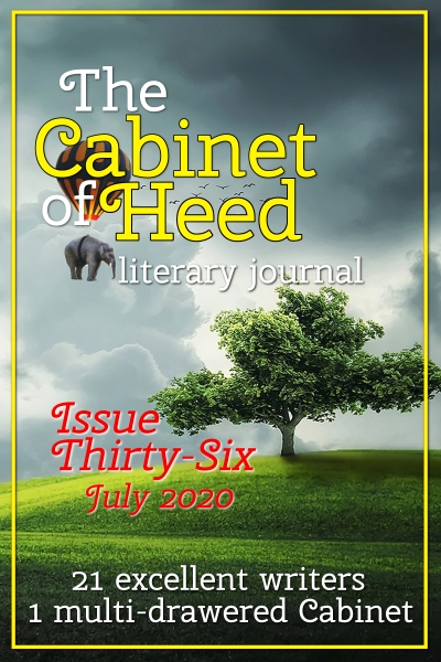 The Cabinet Of Heed Issue 36 Cover