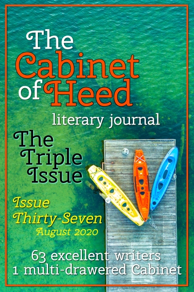 The Cabinet Of Heed Issue 37 Cover