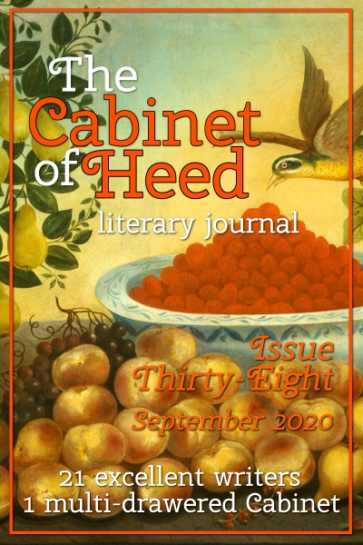 The Cabinet Of Heed Issue 38 Cover