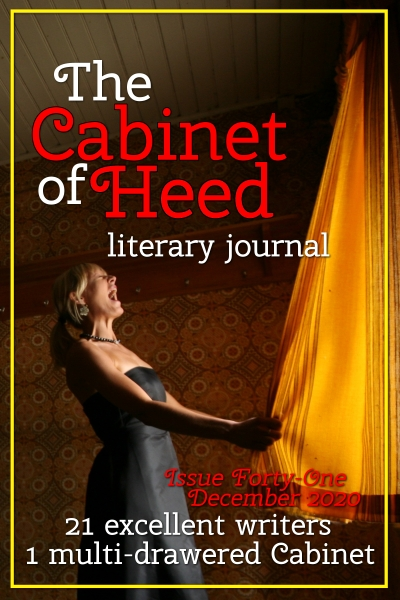 The Cabinet Of Heed Issue 41 Cover