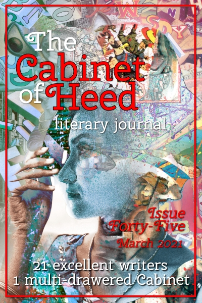 The Cabinet Of Heed Issue 45 Cover