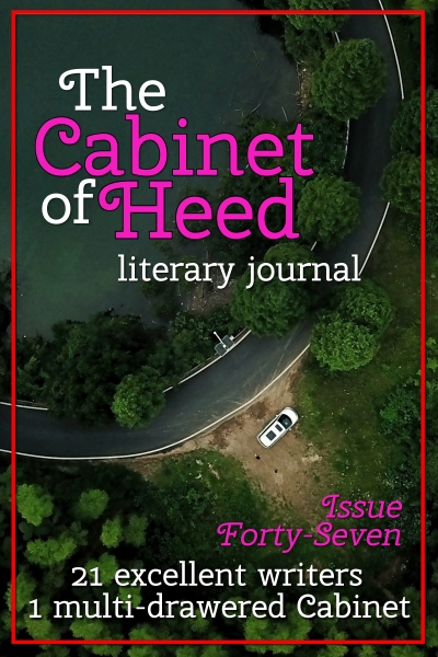 The Cabinet Of Heed Issue 47 Cover